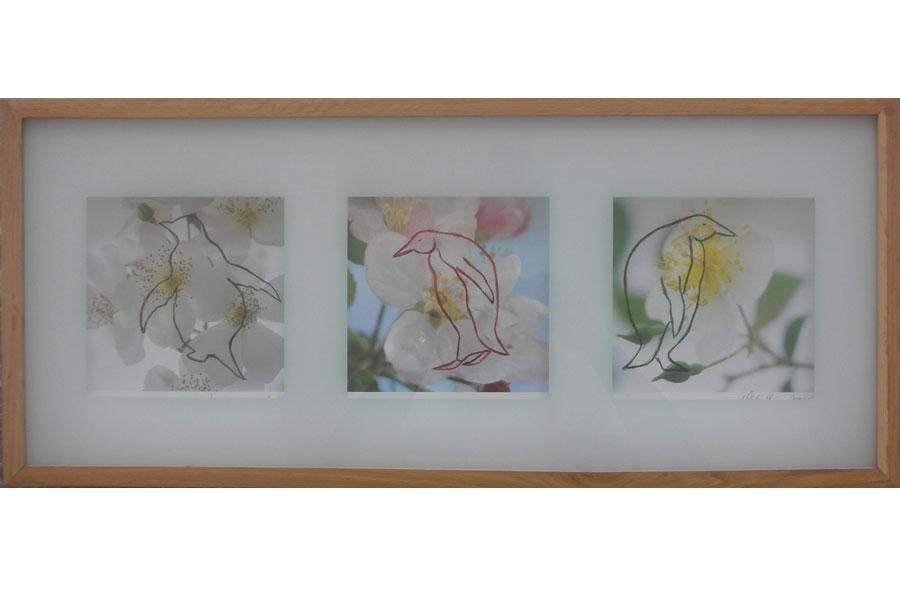 Blossom I 2003IKEA Rahmen, Fotos bemalt – 31 x 71 x 3 cm